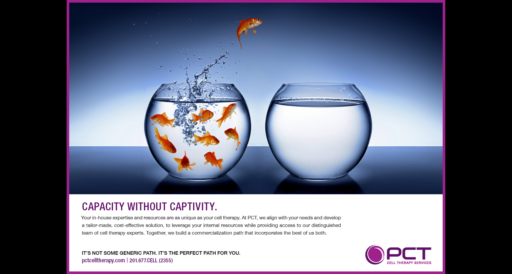 goldfish - PCT CELL THERAPY - ADVERTISING