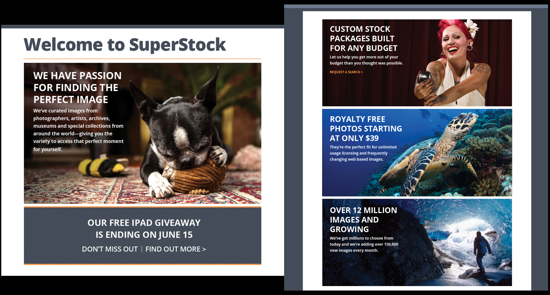 micro - SUPERSTOCK - CAMPAIGN LANDING PAGES