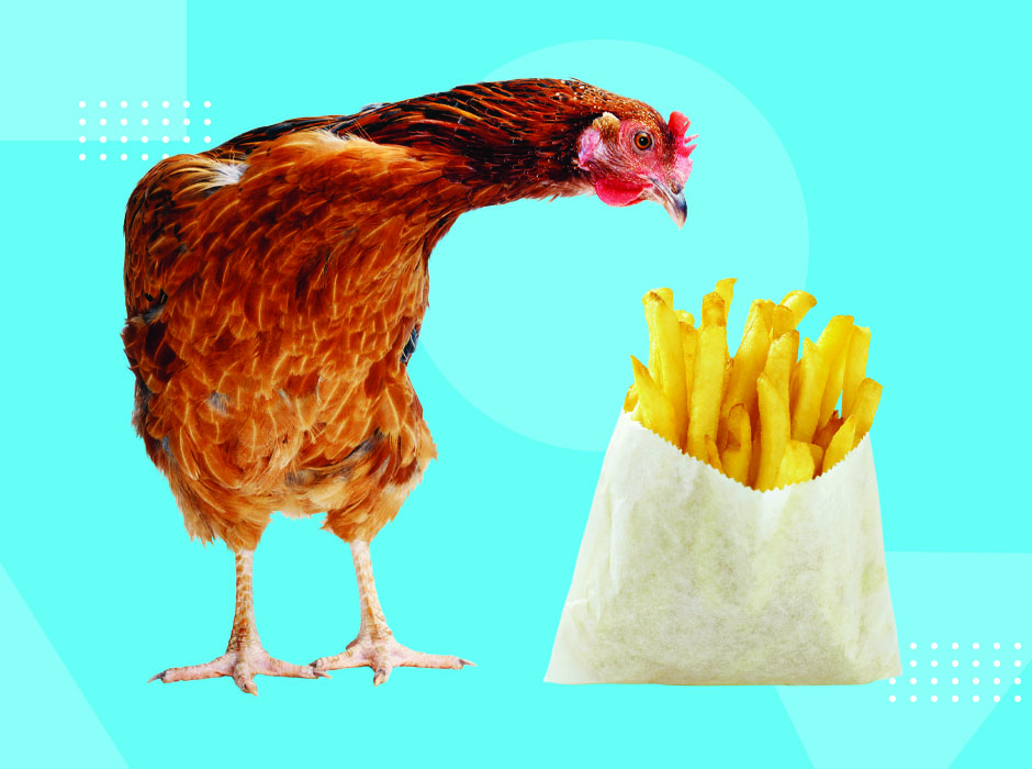 Chicken-Looking-At-French-Fries.jpg